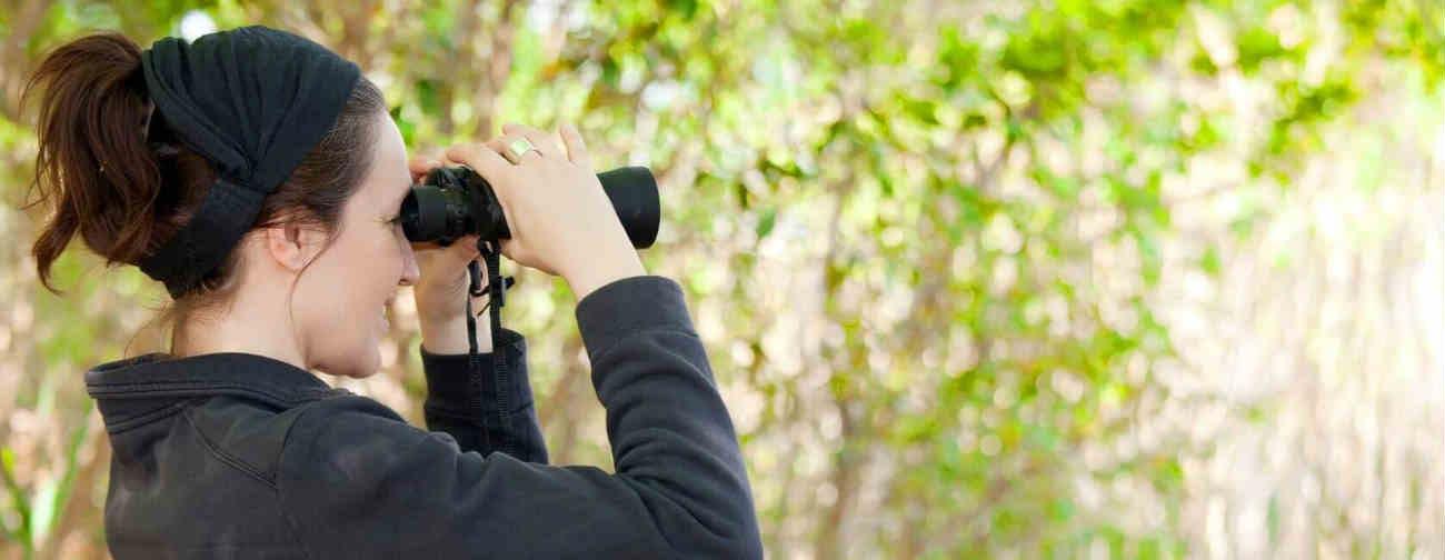 Binoculars How To Buy