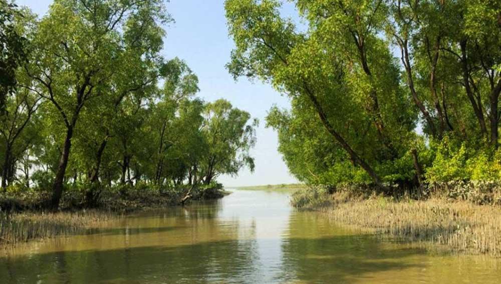 Canal-Nijhum-Dwip